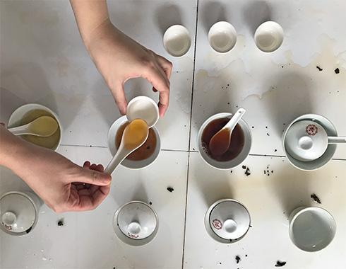 TEASANE, L'EMPIRE DU THÉ, Katrin Rougeventre, THÉ, TEA TASTING, DÉGUSTATION, goût, thé de Chine