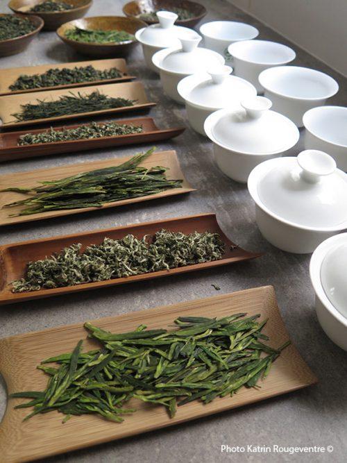 TEASANE, L'EMPIRE DU THÉ, Katrin Rougeventre, thé, tea tasting, thé chinois, thé vert
