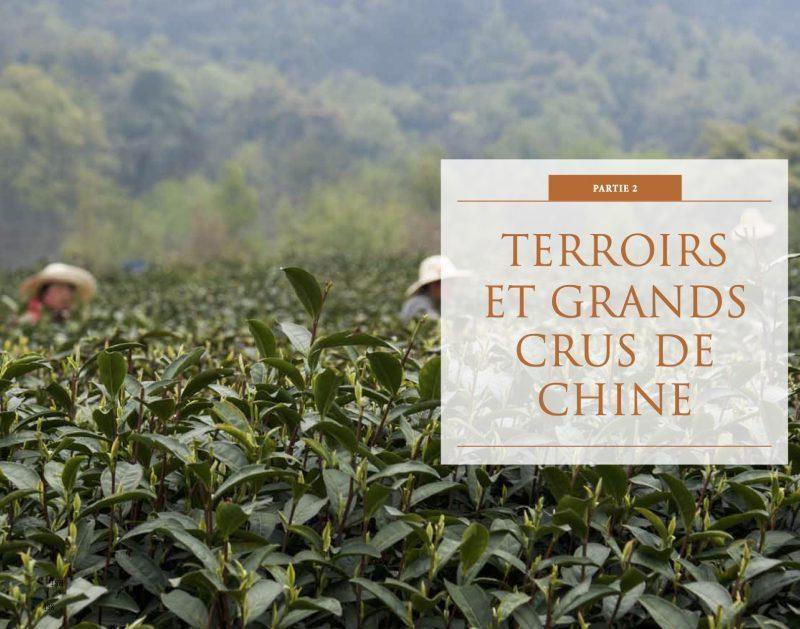 GUIDE DES THÉS DE CHINE,TEASANE, Katrin Rougeventre, L'EMPIRE DU THÉ, COMPTOIR THÉ, THÉS DE CHINE